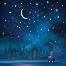 10X10FT Xmas Thin Vinyl photography photo prop Studio background backdrops DS58