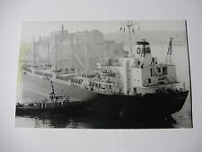 E331 - MAPAMOOY?? & BULL TERRIER TUG - Merchant Ship PHOTO