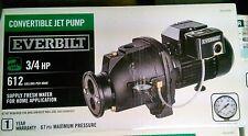 Everbilt DP370C 3/4 HP 612 gph Whole House Convertible Water Jet Well Pump
