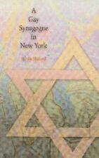 A Gay Synagogue in New York by Moshe Shokeid (2002, Paperback)