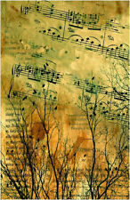 Framed Vintage Style Print of Music Paper with Birds, Trees & Notes (Picture)