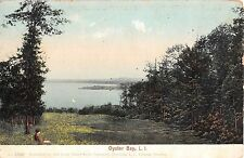 1905 Bird's Eye View Oyster Bay LI NY post card