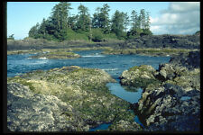 344039 Rocky Pacific Coast Pacific Rim British Columbia A4 Photo Print