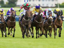 The Trustful Trading Horse Racing Betfair Betting System