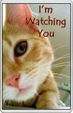 unusual Large fridge magnet side view of CAT WATCHING YOU novelty gift
