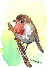 ACEO Limited Edition  - A little European robin