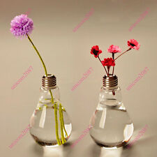 Light Bulb Stand Glass Flower Vase Hydroponic Container Home Wedding Creative CA