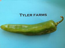 15+ Sweet Anaheim Pepper seeds (organic chili, chile) Great for Roasting