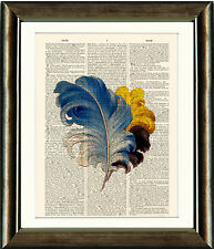 Old Antique Book page Art Print - Vintage Feathers 4 Dictionary Page Print