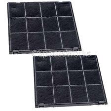 Hotpoint-Ariston Genuino extractora filtros de ventilación de carbono 27 X 24cm C00308181 x2