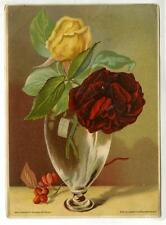 1880s Victorian Trade Card Chromolitho Dry Goods, Middletown, NY, Demorest's Pat