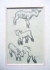 ANIMALS LAMBS SUSAN BEATRICE PEARSE PENCIL C1920