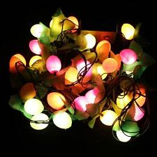 28 LED Multi Fruits Outdoor Indoor String Fairy Light Christmas Xmas Tree Decor
