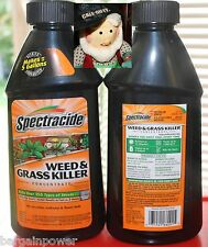Spectracide WEED & GRASS KILLER 16 oz Concentrate makes 5 gallons