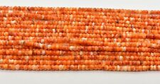 Orange  White Spiny Oyster Shell  Rondelle 4 MM Beads 16 Inch Strand