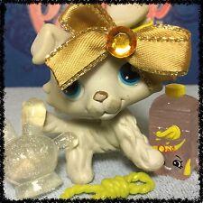 Littlest Pet Shop Collie DOG  White Grey Gray 363 BLEMISHED LOOSE HEAD SHOPKINS