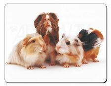 Guinea Pigs Computer Mouse Mat Christmas Gift Idea, GIN-1M