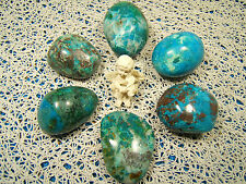 CHRYSOCOLLE MALACHITE Galet poli 30-40 mm de long EXTRA