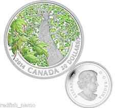 2014 Canada $20 1oz Fine Silver Coin - Canadian Maple Canopy (Spring Splendour)