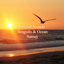 Natural Sounds Seagulls Ocean Sunset CD Beach at Night Relaxation Stress Relief