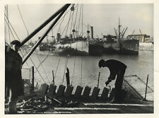 Photo Argentique Port Marine Marchande 1940`