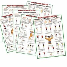 Weight Training & Bodybuilding A2(17''x24'') Laminated Poster / Chart - Set of 6