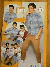 One Direction, Liam Payne, Harry Styles, Double Sided Two Page Centerfold Poster