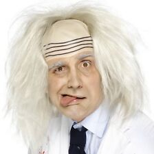 Halloween Fancy Dress Madman Wig & Headpiece Mad Scientist Beetlejuice type Wig
