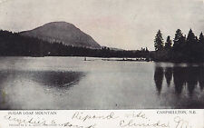 Sugar Loaf Mountain CAMPBELLTON New Brunswick Canada 1909 Warwick Bros & Rutter
