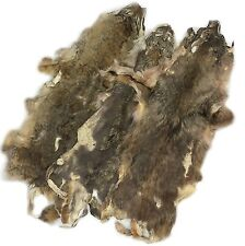 Springfield Leather Company Coyote Fur Hides (Very Low Grade Pelts/Pieces 3pk)