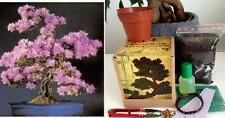 Judas Tree Bonsai Kit, MEGA KIT- Soil/Pots/Seeds2x/Wire/Fertilzer/Mesh/Tweezer