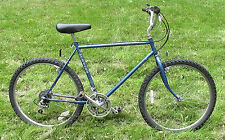 "Vintage Schwinn Mesa Runner 21"" 10-Speed Mountain Bike"
