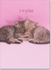 Two Kittens Snuggling Funny Cat Valentine's Day Card by Avanti Press