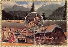BG2881 wurzenpass karnten deer  CPSM 14x9.5cm austria