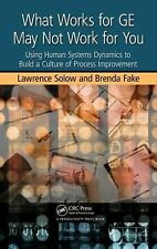 What Works for GE May Not Work for You: Using Human Systems Dynamics to Build a