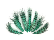 USA SELLER 1 Dozen - Mint Green Grizzly Rooster Chickabou Fluff Feathers
