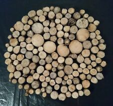 155 SLICES PIECES CHUNKY WOODEN DISCS DRIFTWOOD, BEACH CRAFTS RUSTIC PROJECT ART