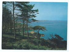 Colour Postcard of Pine Forest, St Martins, Guernsey
