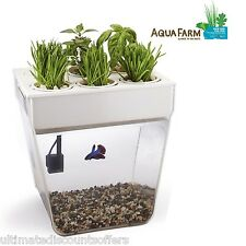 Fish Tank Aquarium Aqua Farm V2 Self Cleaning 3 Gal Grows Food Plants Betta Fish