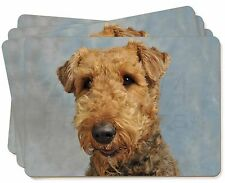 Airedale Terrier Dog Picture Placemats in Gift Box, AD-AD2P