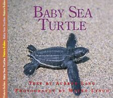 Baby Sea Turtle (Nature Babies)-ExLibrary