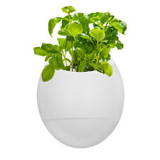Self Watering Indoor Smart Herb Growing Life Pod