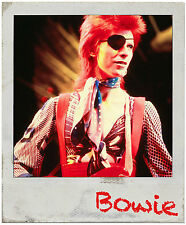 David Bowie Sticker Decal Changesomebowie Nothing Has Changed Heathen Polaroid