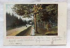 AK  Naundorf Waldpartie nach Lindhardt Litho gel. 1903