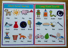 Short Vowels & Long Vowels - A4 Laminated Poster- Read/Write/Spell- Phonics