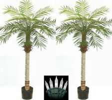 Two 5 foot Artificial Phoenix Palm Trees Pot Holiday Christmas Lights Date Sago