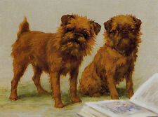 BRUSSELS GRIFFON CHARMING DOG GREETINGS NOTE CARD TWO BEAUTIFUL DOGS AND BOOK
