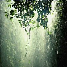 D049  SOUNDS OF NATURE RELAXING CALMING TROPICAL RAIN STORM AUDIO CD
