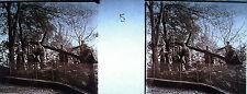 Photographie c1920 Chemin de croix des Espélugues Simon aide Jésus Chirst