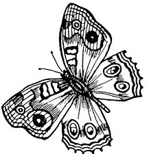 Unmounted Rubber Stamps, Flowers, Painted Lady Butterfly, Butterflies, Nature